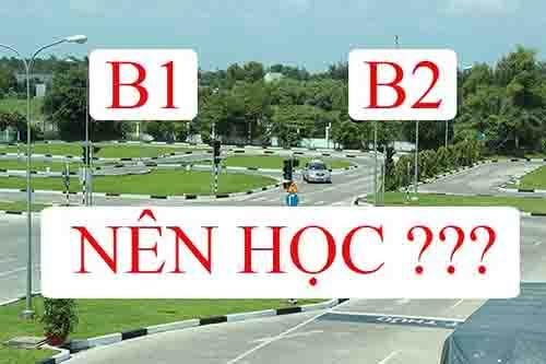 nên học b1 hay b2