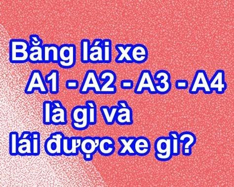 bang-lai-xe-a1-a2-a3-a4-lai-duoc-xe-gi